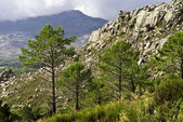 Sierra guadarrama — Stock Photo