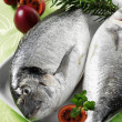 Stock Photo: Gilthead sebream