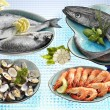 Fresh fish and shellfish — Stock Photo
