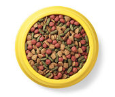 Pet food in bowl — Stock Photo
