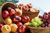 Summer fruits — Stock Photo