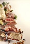 肉类和家禽 — 图库照片