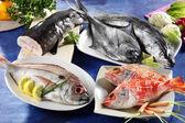 Assortedfres fish — Stock Photo