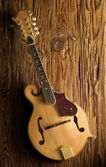Classic mandolin — Stock Photo
