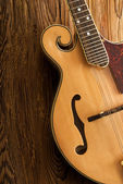 Traditional mandolin close up — Stock Photo