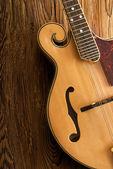 Traditional mandolin close up — Stock fotografie