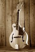 Bluegrass mandoline — Stock Photo