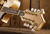 Mandolin peghead — Stock Photo