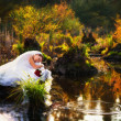 Stock Photo: Beautiful bride on the lake, portrait
