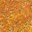Orange wall texture — Stock Photo