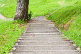 Concrete stairs to park — Stock Photo
