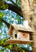 Wooden birdhouse — Stock Photo