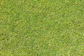 Green grass, soccer field. — Stockfoto