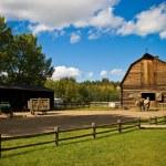 Old barn — Stock Photo #20871735
