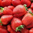 strawberrys — Stock fotografie #23174450