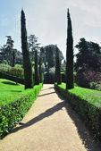 A garden path — Stock Photo