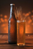Glass and bottle of cold beer  — Стоковое фото