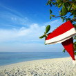 Christmas hat on beach — Stock Photo #21074871