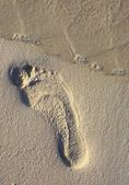 Footstep on the coral sandy beach N51 — Stock Photo