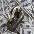 Lock and money — Stock Photo #21115937