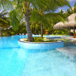 Nice tropic pool - Lizenzfreies Foto