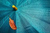 Umbrella and yellow leaf — Stock Photo