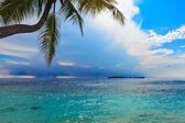 Nice Seascape — Stock Photo