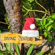 Stock Photo: Pointer to the diving center christmas hat