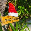 Pointer to the diving center christmas hat — Stock Photo #35602867