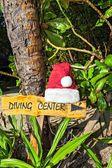 Pointer to the diving center christmas hat — Stock Photo