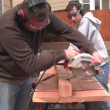 Man and boy sawing wood — Stock Video