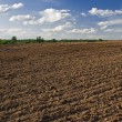 Plowed field — Stock Photo #21822543