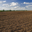 Stock Photo: Plowed field