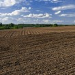 Plowed field — Stock Photo #21822557