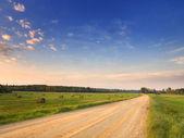 Latvian Landscape — Stock Photo