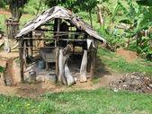 Old hut — Stock Photo