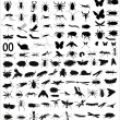 Big collection of 133 different vector insects silhouettes - Stock Vector