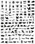 Big collection of 133 different vector insects silhouettes — Stock Vector