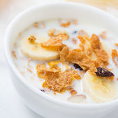 Whole grain cereal with cranberries and slices of banana breakfa — Stock Photo