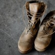 US Army boots — Stock Photo #30267767