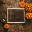 Grungy textured halloween frame with five pumpkins — Stock Photo