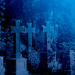 Old misty graveyard at night — Stock Photo #32455417