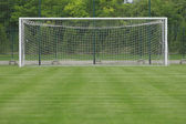 Soccer field grass Goal at the stadium Soccer field with white lines on grass — Stock Photo