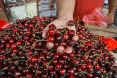 Man holding a cherry in hand, fresh cherries natural cherry to background on the street market — Stock Photo