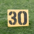 Stock Photo: 30 Yard Line on American Football Field