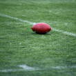 Stock Photo: American Football ball