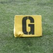 Stock Photo: G Yard Line on American Football Field