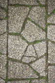 The fragment of a pavement — Stock Photo