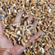 Stock Photo: Many cigarette smoked in crowd of