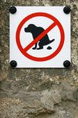 没有狗大便孤立的背景墙上的标志 — 图库照片